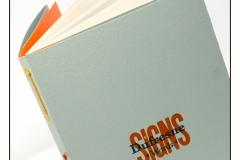 19virgin_signs_cover_cones